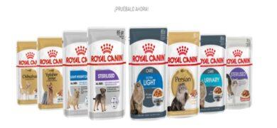Prueba gratis para perros y gatos de Royal Canin - Muestragratis.com
