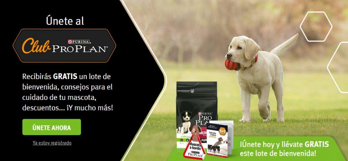 Forma Parte Del Club Pro Plan De Purina Y Gana Un Lote De Bienvenida Para Tu Mascota