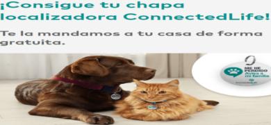 Consigue una chapa localizadora gratis para tu perro o gato - Muestragratis.com