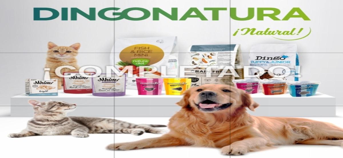 Consigue Alimento Gratis Para Tu Mascota