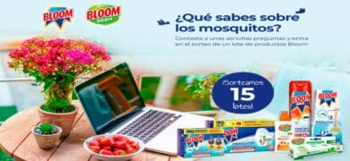 Gana Un Lote De Productos Bloom En Tu Casa Club