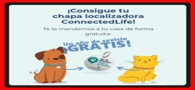 Connected Life Regala Chapas Localizadoras Para Tu Mascota