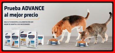 Consigue Reembolso De Advance En Alimento Para Perros Y Gatos Mod