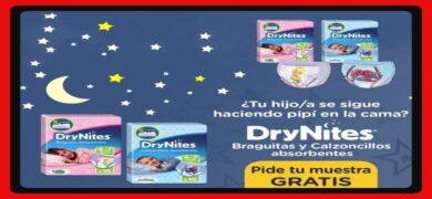 Drynites Regala Pañales A Domicilio