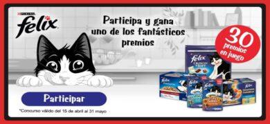 Consigue Alimento Felix Gratis Para Tu Gato