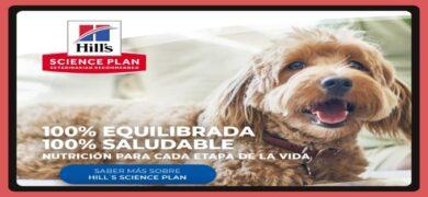 Dale Gratis A Tu Mascota Hill´s Science Plan
